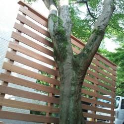 立木の根元を隠したいと言うご要望でした